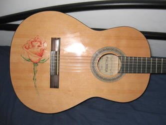 Guitar Design by Ruter