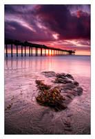 PurpleScape by GoranDA