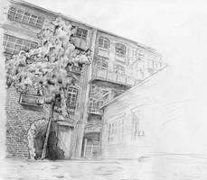 'backyard drawing' by kiedan