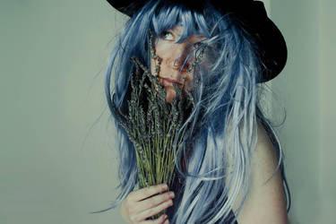 Lavender blues by joiedevivre89
