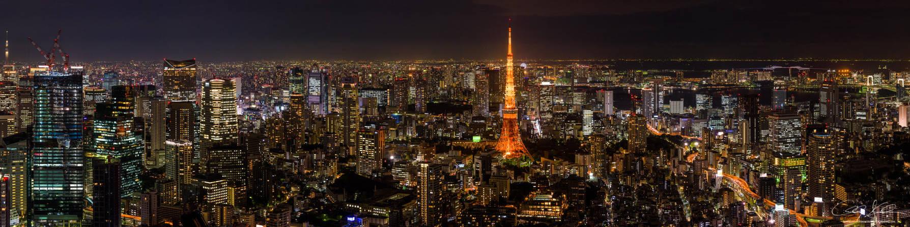 Tokyo Skyline by AndrewShoemaker