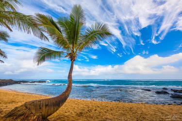 Sunday Morning Paradise by AndrewShoemaker