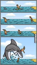 Shark by noitego