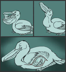 Fishy and Feathered Friends-Vore Sketchcomic[ENDO] by SpidersVore
