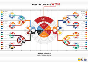 Fifa worldcup 2010 infographic by NathanLeaw