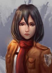 Mikasa by Norvice