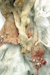 Mantilla of the Flesh - detail by sick-snowangel