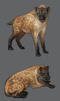 Hyena by 3Daemon