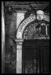 University by WickedNox