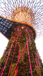 Brilliant Tree by kate-takako
