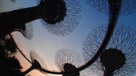 Under The Sky-Walk by kate-takako