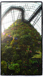 Cloud Forest - 1 @ Gardens By The Bay by kate-takako