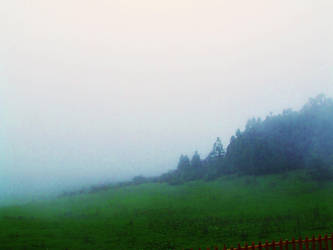 plain in the fog by queely