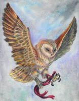 Barn Owl Prize by Eviecats