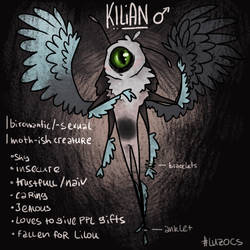 Character Sheet - Kilian by LuzieCream