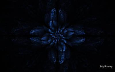 Blue Flower by billyrayjay