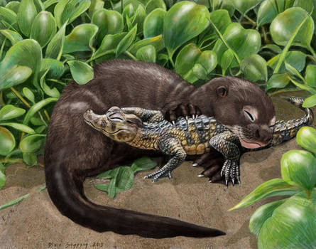 Giant river otter pup and his caiman buddy by Psithyrus
