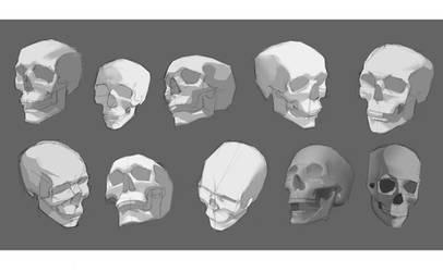 skull study2 by KuroRime