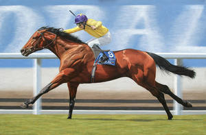 Sea The Stars.Champion thoroughbred racehorse. Oil by painterman33