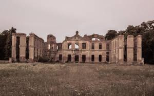 Palace in Kamieniec by ixada