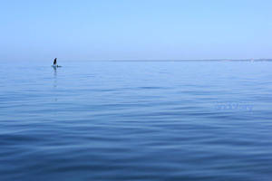 Into The Blue by andotsiry