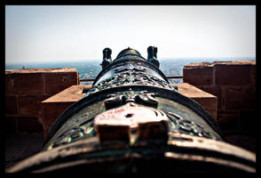 Down the barrel by abhimanyughoshal