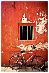 Bicycle Day by abhimanyughoshal