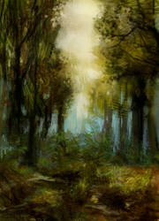 Forest path by la-Structure-du-Ciel