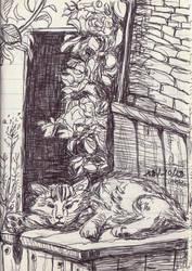 Garden Cat by la-Structure-du-Ciel