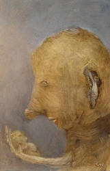 Teddy by chris10belgium