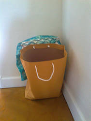 Shopping Bag Is Experiencing Unbridled Happiness by ricken4003