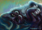 Gift: Alice pet portrait for Fuzzyness by Rabenfeder