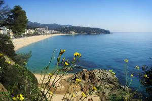 panoramic from Lloret de Mar II by Quijuka