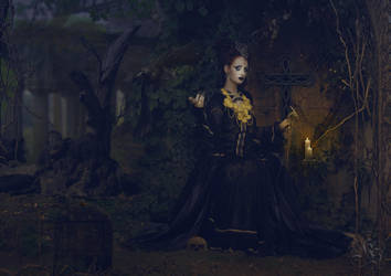 Black Widow by Quijuka