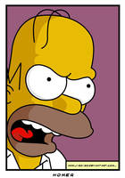 Homer by J-Ro-20