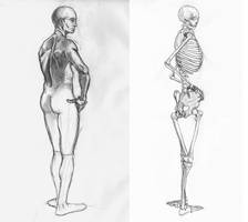 Anatomy and the Live Model Wk6 by SmilinJack