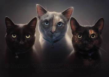 Experimental Pet Portrait Commission by HannasArtStudio