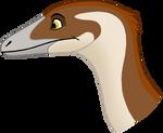 Sinosauropteryx Head by codylake