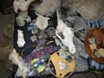 Grey wolf ritual altar 3 by lupagreenwolf