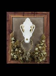Tarot of Bones Major Arcana Originals For Sale! by lupagreenwolf