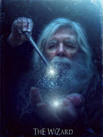 The Wizard by barbranz