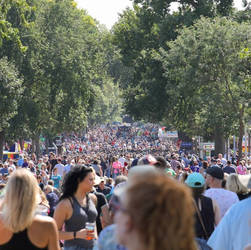 Another record breaking year for crowds by sequential