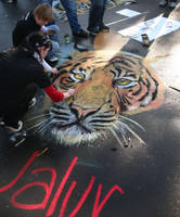 Tiger chalk painting by KilowattKatie