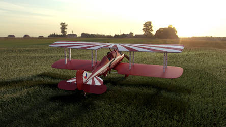 Nieuport-Delage NiD 29 at sunrise by doomsw1tch