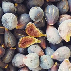Figs by ellianounoursblanc