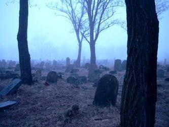 misty morning VI by OoooKATIoooO