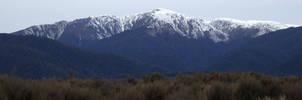 New Zealand by LonelynMisUnderStood