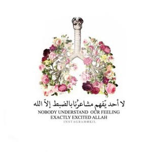alkhaledi's Profile Picture