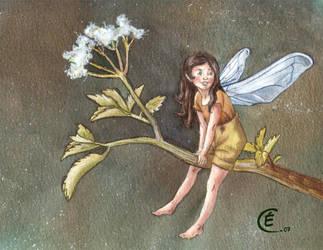 fairy by damoisellemimi