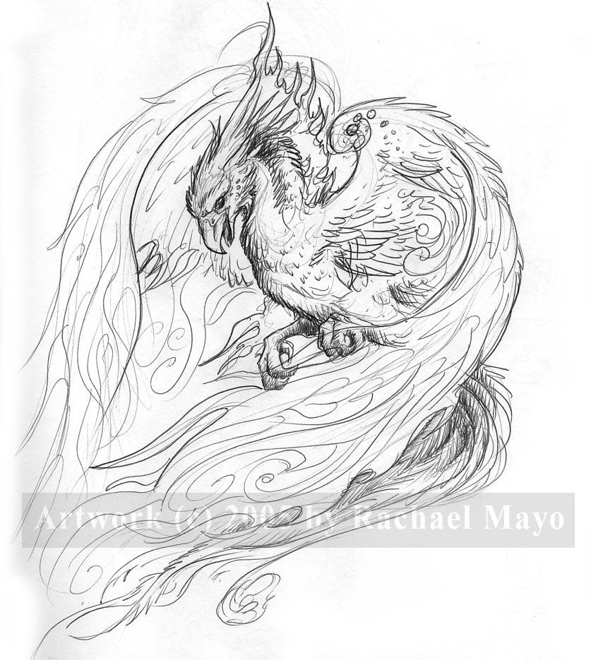 fire bird coloring pages - photo#23